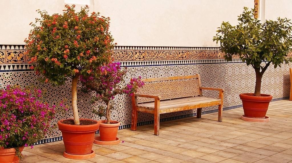 Aménagement du jardin : idées de décoration